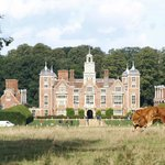 Blickling Estate - mooove!