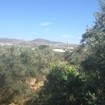 صورة فوتوغرافية لـ ‪Naxos Holidays Bungalows Apartments‬