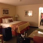 Photo de BEST WESTERN PLUS A Wayfarer's Inn and Suites