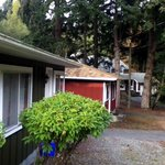 Malahat Bungalows Motel照片