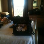 Room 53 - sorry so messy - traveling by motorcycle so have to bring up all luggage.