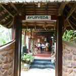 Somatheeram Ayurvedic Health Resort의 사진