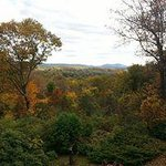 Fall foliage view