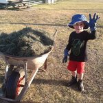 little farmer :)