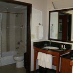 view of nice sink and bathroom
