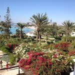 Photo de Nissi Beach Resort