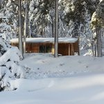 Birch Cabin after early Oct. snow storm