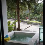 2 bed room villa with jacuzzi