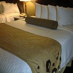 BEST WESTERN PLUS Mishawaka Inn resmi