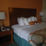 Foto BEST WESTERN PLUS University Inn