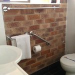 Grab Bars in New Renovated Bathrooms