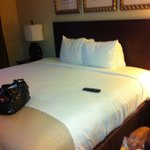 Bilde fra Holiday Inn Charleston Airport/Convention Center