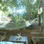 Foto di Everglades International Hostel