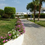 Bilde fra Dreams Beach Resort