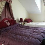 Photo de Ballylawn Lodge Bed and Breakfast