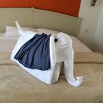 elephant made from towels and pillows  and my dress