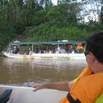 Tambopata Eco Lodge照片
