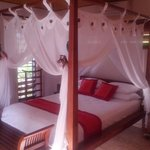 Manta Ray Bed and Breakfast resmi
