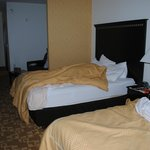 Comfort Suites West Dallas resmi