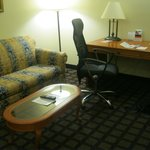 Φωτογραφία: Holiday Inn Express & Suites - Savannah South I-95