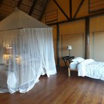 Bush Lodge - Amakhala Game Reserve Foto
