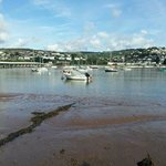 Estuary between Shaldon and Teignmouth