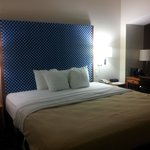 Foto de Comfort Inn & Suites Savannah Airport