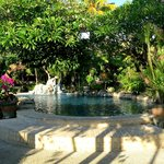 Hidden Paradise Cottages resmi