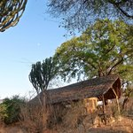 Ruaha Riverbank Cabin