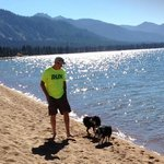 At a Dog-Friendly Lake Tahoe Beach Closeby