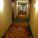 Billede af Residence Inn Mississauga-Airport Corporate Center West