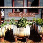 Cerruti Cellars -  one of many urban wineries in Oakland!