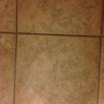 BEST WESTERN Legacy Inn & Suites Beloit/South Beloitの写真