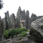 Stone Forest, National Geography Park, World Nature Heritage Site