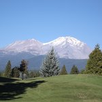 Mount Shasta Resort照片