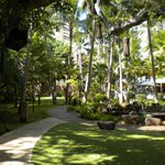 صورة فوتوغرافية لـ ‪The Royal Hawaiian, a Luxury Collection Resort‬
