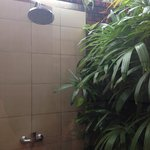 twin garden bungalow outdoor shower