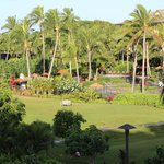 Photo de Koloa Landing at Poipu Beach Wyndham Grand Resort