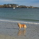 Riley at Cape Elizabeth, ME
