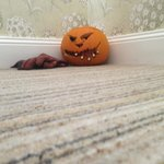 Watch out for an array of man eating pumpkins around the hotel!