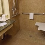 Mobility Accessible Bathroom with Roll-in