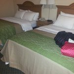 Foto van Comfort Inn & Suites Chesterfield