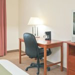 Φωτογραφία: Holiday Inn Express Adrian