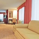 Holiday Inn Express Hotel & Suites Philadelphia-Choctaw Foto