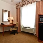 Фотография Holiday Inn Express Abilene Mall