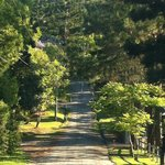 Cape Byron Retreatの写真
