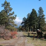 Foto de Elk Trace Bed & Breakfast