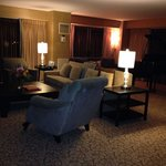 Chesapeake Suite: Luxury Living room with grand piano - view of Zoo