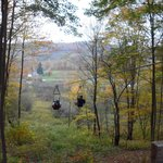 Zip Lining in the Fall trees!