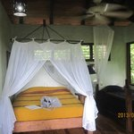 Playa Nicuesa Rainforest Lodge resmi